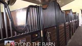 beyond-the-barn